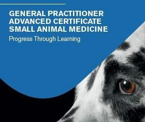 New European-wide Postgraduate Qualification in Advanced Small Animal Medicine Launched