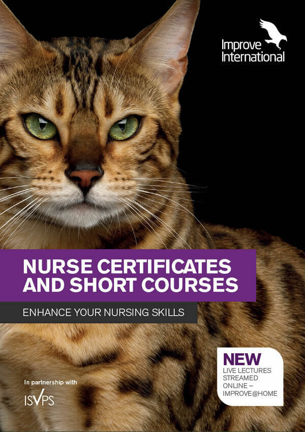 Nurse Certificates and Short Courses