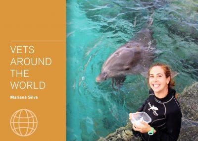 Vets around the world - Mariana Silva