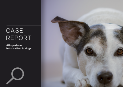CASE REPORT: Afloqualone intoxication in dogs