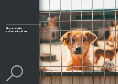 Unsuccessful animal adoptions