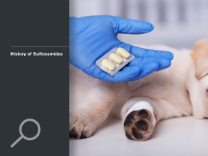 History of Sulfonamides