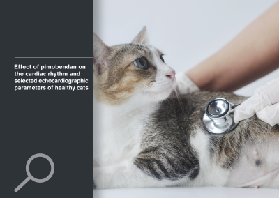Effect of pimobendan on the cardiac rhythm and selected echocardiographic parameters of healthy cats